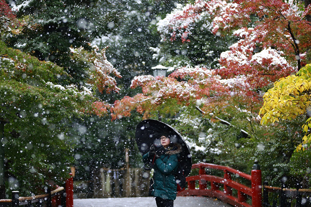 Токиодо 54 жылдан бери биринчи жолу кар жаады