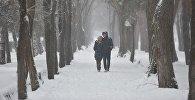Пара во время снегопада. Архивное фото