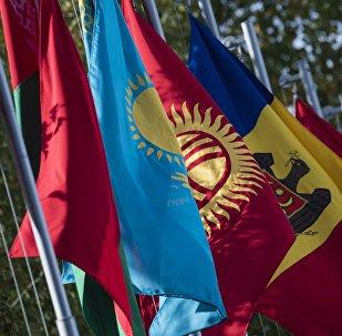 Флаги стран участников заседания Совета глав государств – участников СНГ. Архивное фото