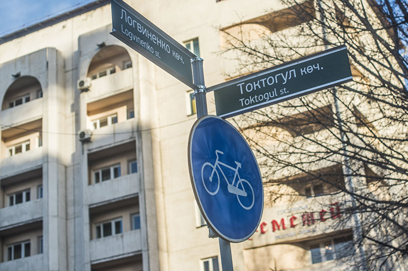 Установленные активистами дорожные указатели на пересечении улиц Токтогула и Логвиненко
