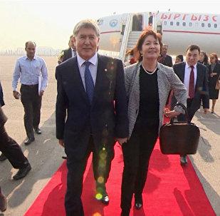 Алмазбек Атамбаевди Делинин аэропортунан индиялык жоон топ атка минерлер тосуп алды