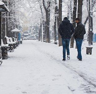 Снегопад в городе Бишкек. Архивное фото