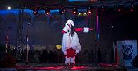 Выступление артиста на новогоднем концерте на площади Ала-Тоо в Бишкеке. Архивное фото