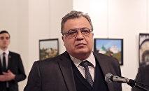 Посол России в Турции Андрей Карлов во время открытия фотовыставки в Анкаре. Архивное фото