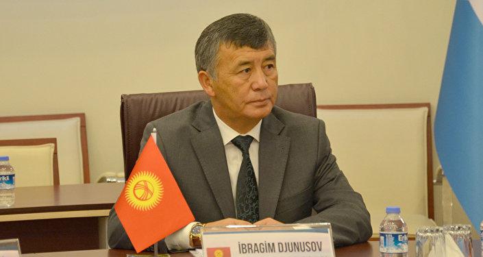 Кыргызстандын Түркиядагы элчиси Ибрагим Жунусов. Архив
