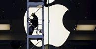 Apple хочет зарегистрировать бренд по-русски — Яблоко