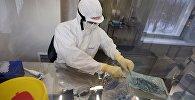 Сотрудник лаборатории ГУ НИИ эпидемиологии и микробиологии имени Н.Ф. Гамалеи, где российские ученые разработали вакцину против лихорадки Эбола.