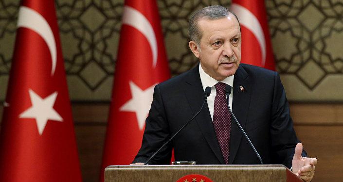 Түркиянын президенти Тайип Эрдогандын архивдик сүрөтү