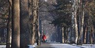 Прохожий на одном из бульваров Бишкека. Архивное фото