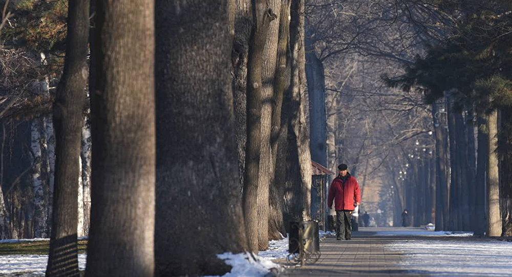 Бишкектин көчөлөрүндө бараткан киши. Архивдик сүрөт