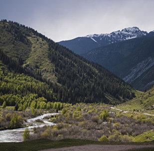 Вид на Григорьевское ущелье в Иссык-Кульской области. Архивное фото