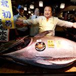 Токиодогу Цукидзи базарында жаңы жылдык аукциондо 212 килограмдык тунец балыгы 628 920 долларга сатылды