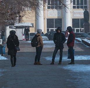 Молодые люди на аллее Молодежи у Кыргызского Национального университета в Бишкеке. Архивное фото