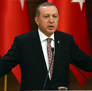 Түркиянын президенти Реджеп Тайип Эрдогандын архивдик сүрөтү