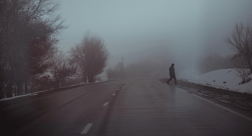 Мужчина переходит трассу Бишкек—Ош. Архивное фото