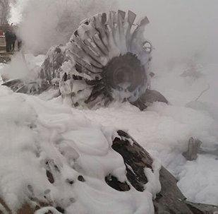 Обломки двигателя самолета Boeing-747 потерпевшего крушение недалеко от аэропорта Манас, Архивное фото
