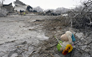 Кукла с цветами на месте авиакрушения самолета Boeing-747 в селе Дача-Суу недалеко от аэропорта Манас