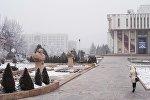Бишкектеги филармониянын имаратынын алдында бараткан жаран. Архивдик сүрөт