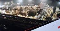Снимок с видеохостинга Youtube канала Live Leak. Разрушение взрывом 19 многоэтажных домов
