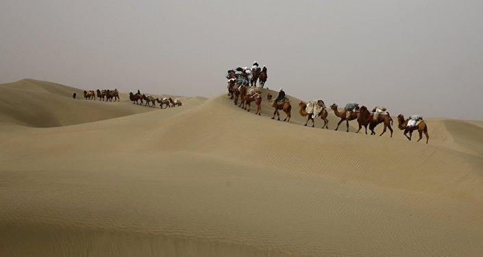 Экспедиция стартует в мае. В Кыргызстан коллектив приедет осенью.