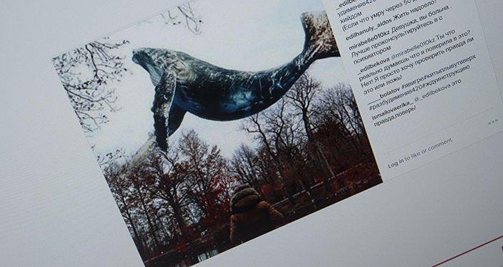 Снимок с социальной сети Instagram пользователей с группы смерти хештегами море китов, тихий дом, хочу в игру, разбуди меня в 4.20