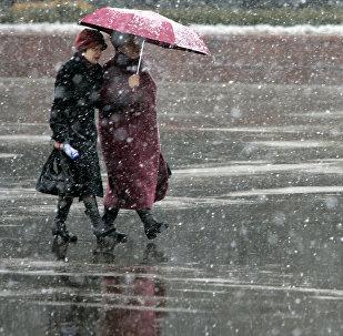 Во время снегопада. Архивное фото