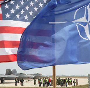 АКШнын жана НАТОнун желектери. Архив