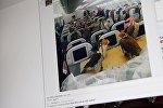Снимок с социальной сети Reddit. Фотография 80 соколов, сидящих в салоне обычного самолета