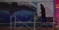Граффити кита-белухи на стене дома на пересечении проспекта Чуй и улицы Логвиненко