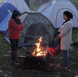 Европадагы мигранттар. Архивдик сүрөт