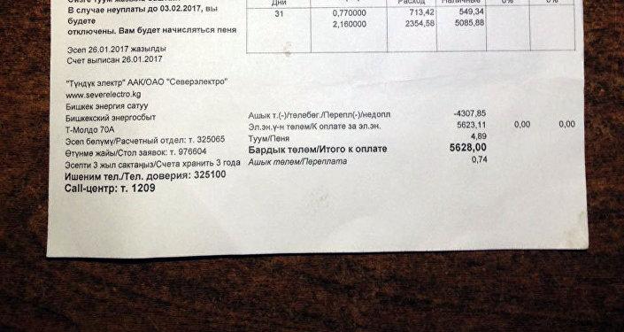 Счет на оплату электроэнергии, пришедший бишкекчанке