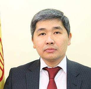 Посол КР в Австрии, постоянный представитель КР при ОБСЕ Джусупов Бакыт. Архивное фото