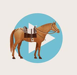 Кыргызское седло и снаряжение для лошади