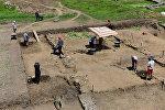 Археологические раскопки. Архивное фото