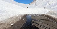 Сход снежной лавины. Архивное фото