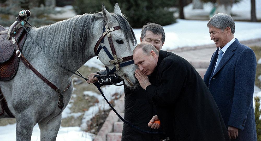 Атамбаев подарил Путину скакуна