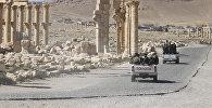 Сирийские солдаты армии проезжают мимо Триумфальной арки в исторической части города Пальмира, в Хомс, Сирия. Архивное фото