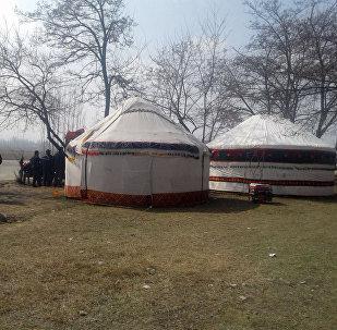Сторонники арестованного депутата Текебаева в селе Акман установили вторую юрту