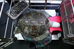 Тайланд зоопаркынын ветеринарлары тирүү ташбакага операция жасап, анын курсагынан беш килограмм тыйын табышкан