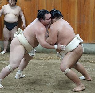 Сумоисты во время соревнований. Архивное фото
