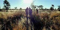 Аборигены. Архивное фото