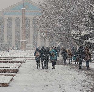 Молодые люди идут по Аллее молодежи во время снегопада в Бишкеке. Архивное фото