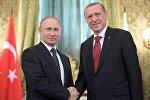Россия президенти Владимир Путин түркиялык кесиптеши Реджеп Тайип Эрдоган менен болгон жулугушуусунда
