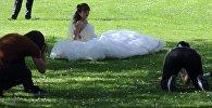 Три фотографа снимают свадебную пару. Архивное фото