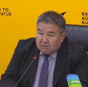 Кыргызстан может помочь рынкам стран СНГ развить экономику — эксперт