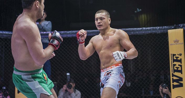 Кыргызстанский боец MMA Мыктыбек Мамасалиев, известный как Ак аюу во время боя. Архивное фото