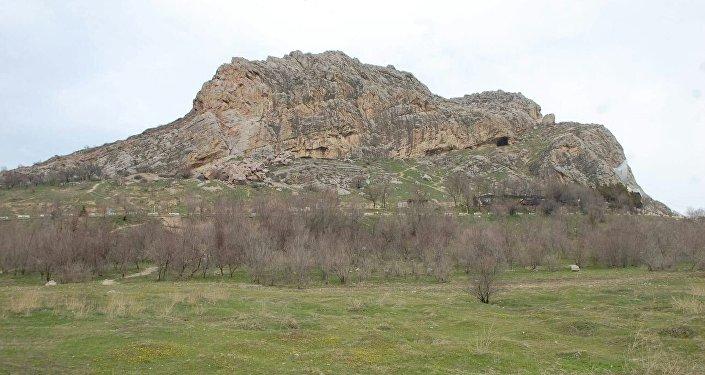 По словам работников Ошского историко-археологического музея, в этом году цветение началось позже, чем обычно.