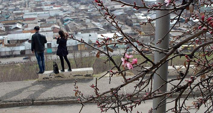 В 2016-м фисташковые деревья зацвели 25 февраля, что было связано с ранним потеплением.