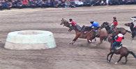 Жесткие стычки и топот коней — скачки и кок-бору на ипподроме