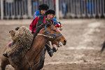 Кыргызстандын алдыңкы улакчыларынын бири Манас Ниязов